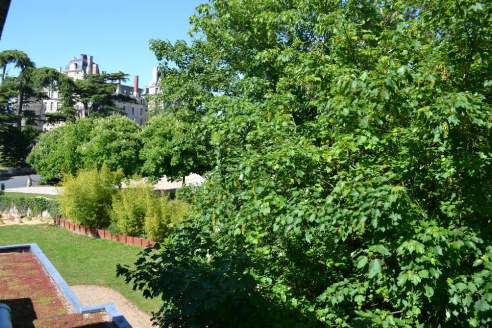 La vue sur le château de Brissac