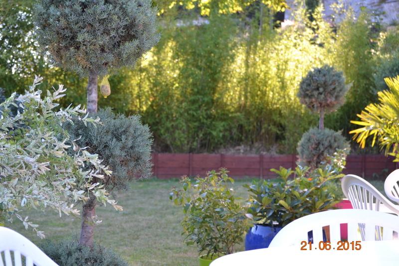 jardin vu de la terrasse